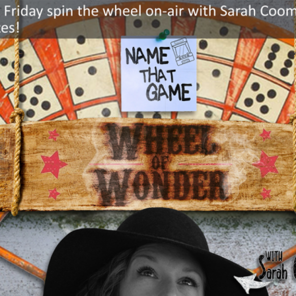 Play Wheel of Wonder With Sarah!